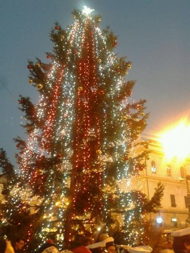 albero_di_natale_2015.jpg