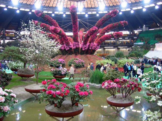 euroflora-genova.jpg