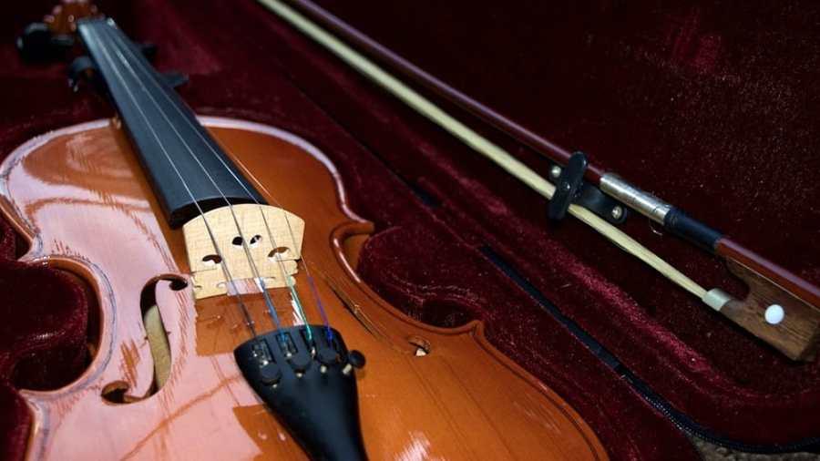 violini-2.jpg
