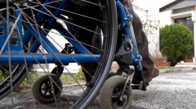 sedia-rotelle-2935.660x368.jpg