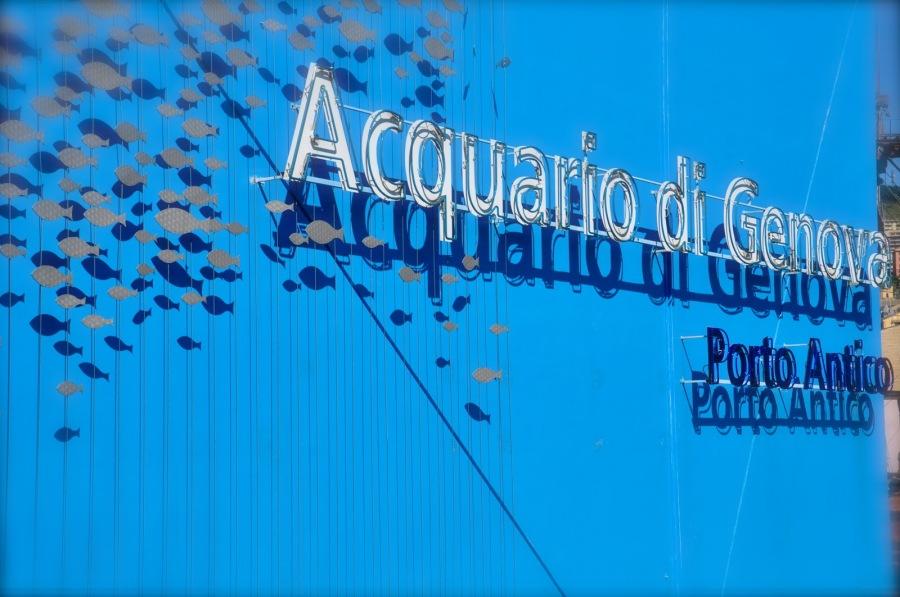 acquario-di-genova.jpg